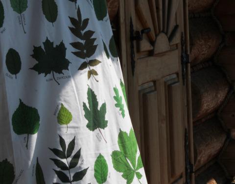 kolekcja liście zasłona bawełna